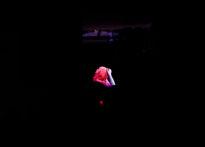 Zarys głowy i rąk aktorki na czarnym tle. Na zdjęciu Kornelia Trawkowska