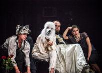 Aktorzy siedzący na scenie, gdzie jedna aktorka ma na głowie czapkę wilka a druga na twarzy maskę pudla